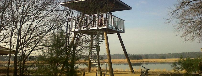 Uitkijktoren Landschotse Heide