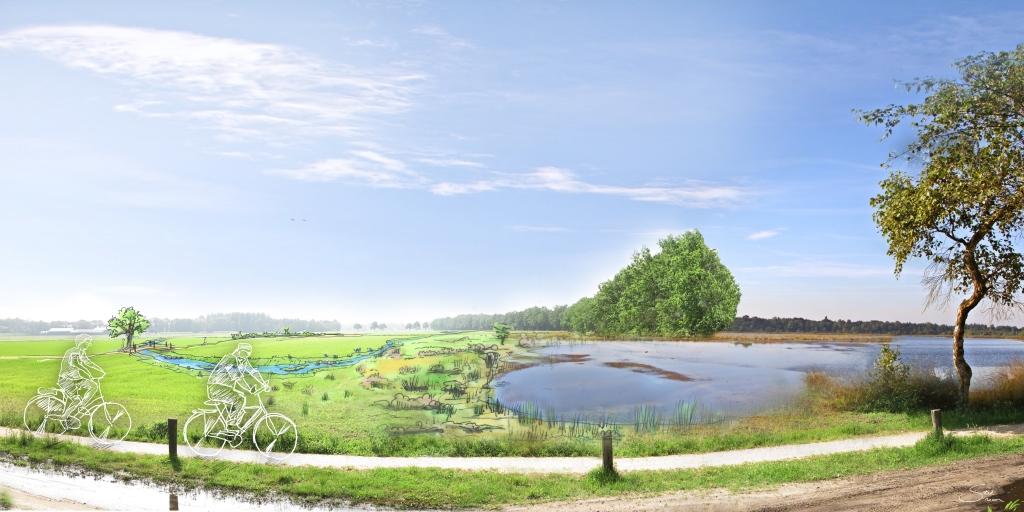 Vernatting en verdroging Landschotse heide
